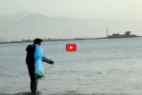 fishing malaga beach
