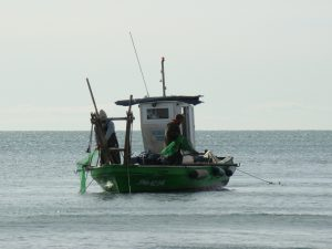 Fishing boat sacaba (2)
